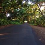 Aloha and Namaste'